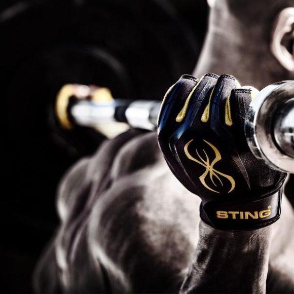 Sting Sports
